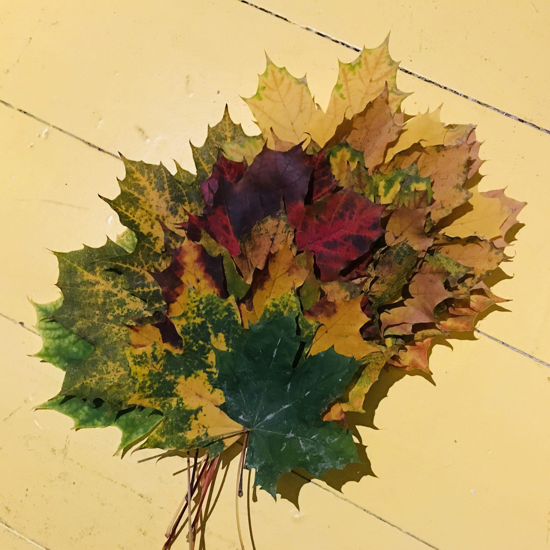 bladeren bij het gedicht Herfst van Vincenzo Cardarelli
